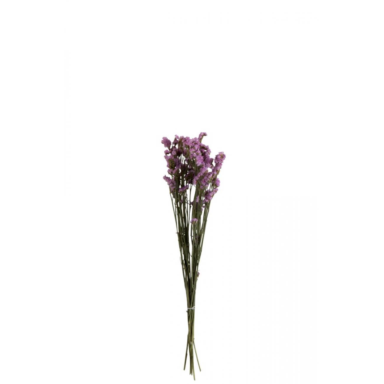 Сухоцветы искусственные цветы J-LINE фиолетового цвета высота 76 см